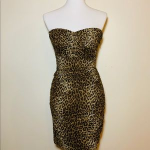 BCBG Leopard dress
